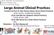 Large Animal Clinal Practices